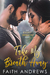 Take My Breath Away (Every Breath #2)