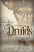 Time of the Druids  (Dunskey Castle, #6)