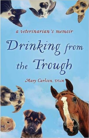 Drinking from the Trough by Mary Carlson