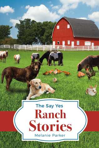 The Say Yes Ranch Stories