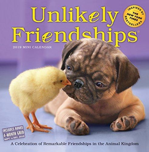 Unlikely Friendships Mini Wall Calendar 2019