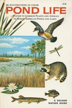 Pond life: a guide to common plants and animals of north american ponds and lakes by George K. Reid