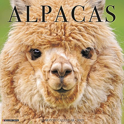 Alpacas 2019 Wall Calendar