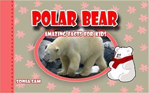Polar Bear: Amazing Facts For Kids