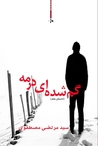 گم شده ای در مه by seyed morteza mostafavi