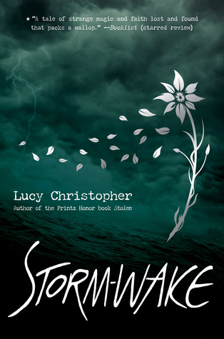 Image result for storm wake lucy christopher