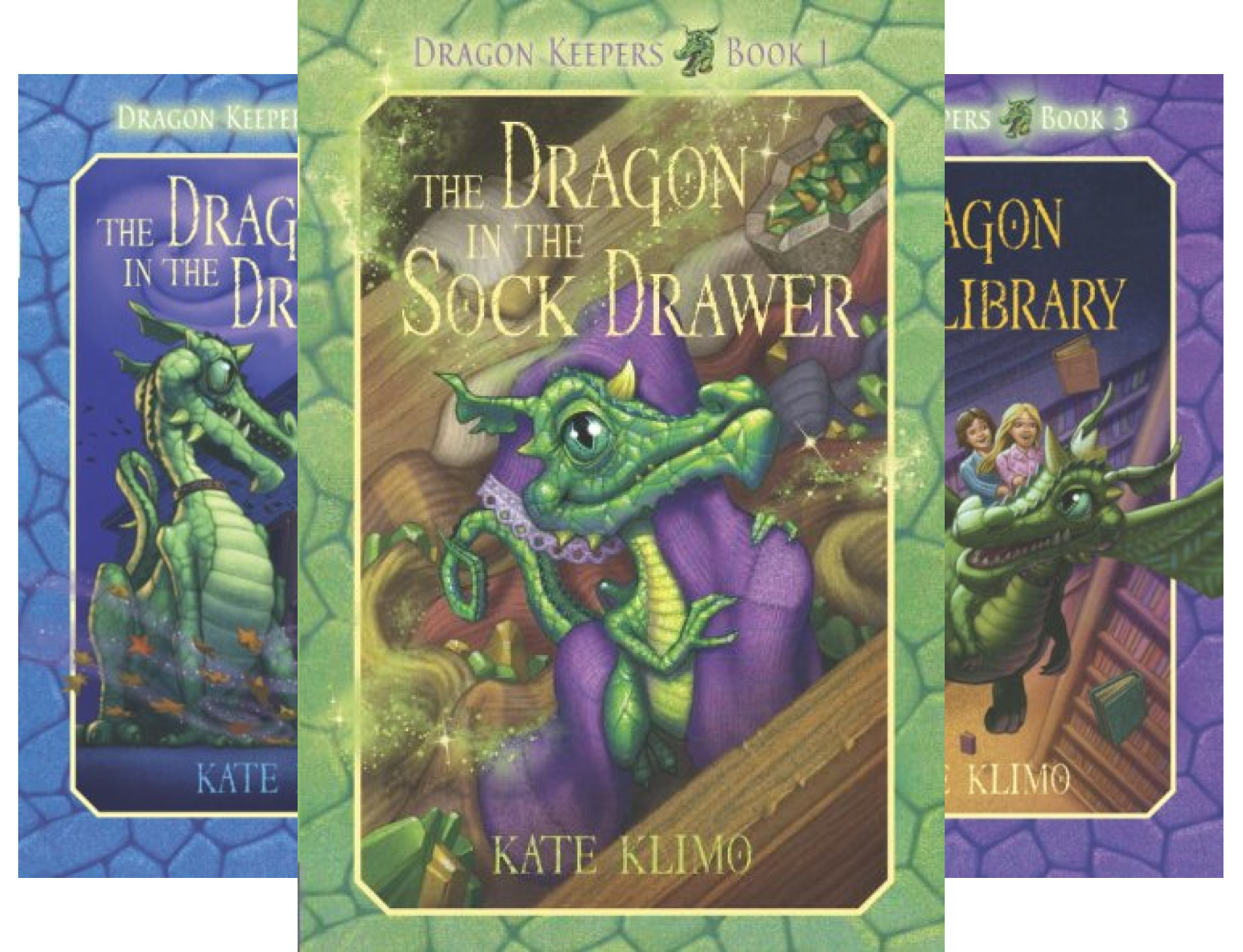 Dragon Keepers (6 Book Series)