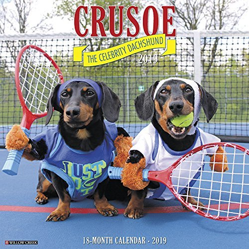 Crusoe the Celebrity Dachshund 2019 Wall Calendar