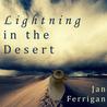 Lightning in the Desert by Jan Ferrigan
