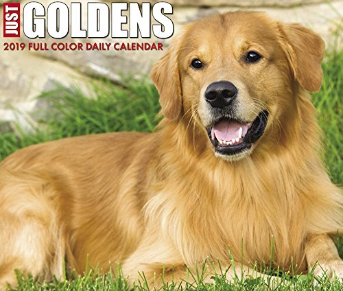 Just Goldens 2019 Box Calendar