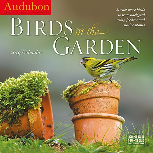Audubon Birds in the Garden Wall Calendar 2019
