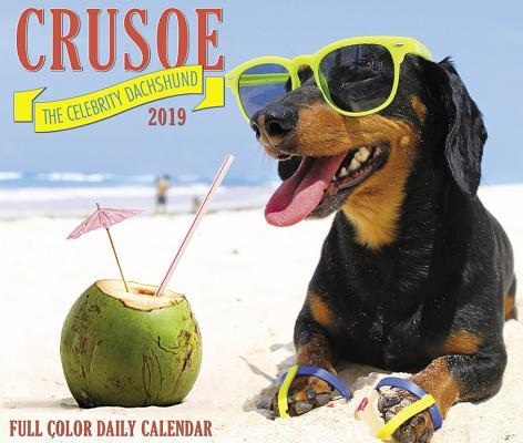 Crusoe the Celebrity Dachshund 2019 Box Calendar