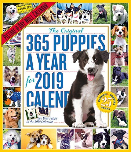 365 Puppies-A-Year Picture-A-Day Wall Calendar 2019