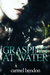 Grasping at Water by Carmel Bendon