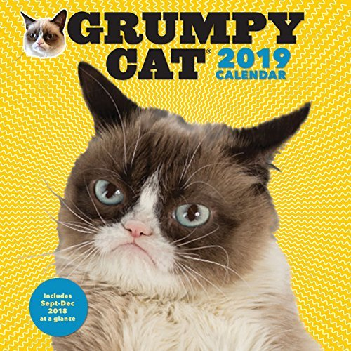 2019 Wall Calendar: Grumpy Cat