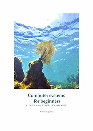 Computer systems for beginners: a useful support for understanding