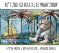 Te' Tu'ux ku kajtal le wáayo 'obo'