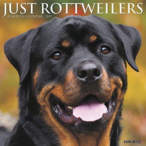 Just Rottweilers 2019 Wall Calendar