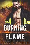 Burning Flame (Californian Wildfire Fighters Book 3)