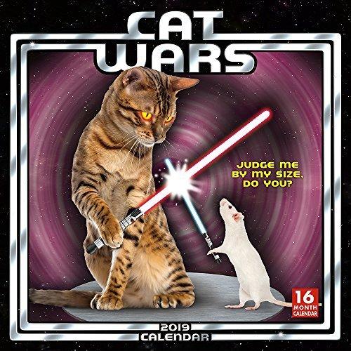 Cat Wars 2019 Wall Calendar, 12 x 12, (CA-0377)