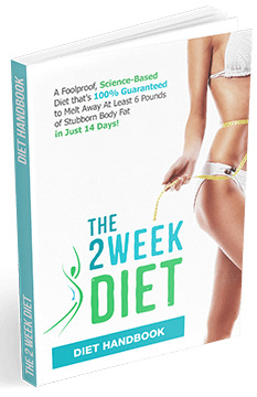 The 2 Week Diet Plan By Brian Flatt