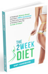 The 2 Week Diet Plan by Brian Flatt by Brian Flatt