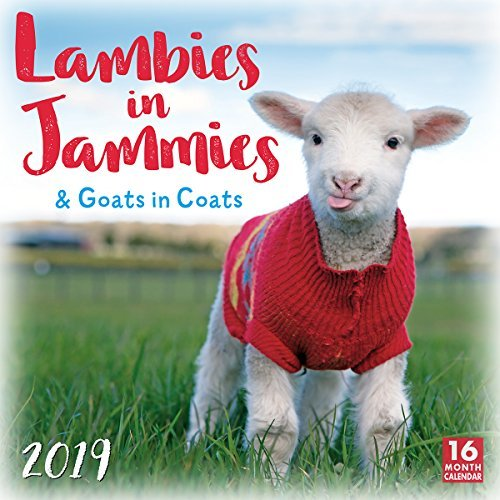 2019 Lambies in Jammies & Goats in Coats 16-Month Wall Calendar: By Sellers Publishing