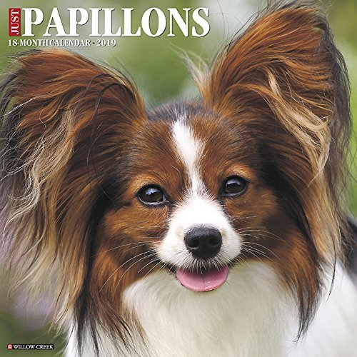 Just Papillons 2019 Wall Calendar