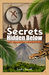Secrets Hidden Below (The Adamson Adventures, #1)