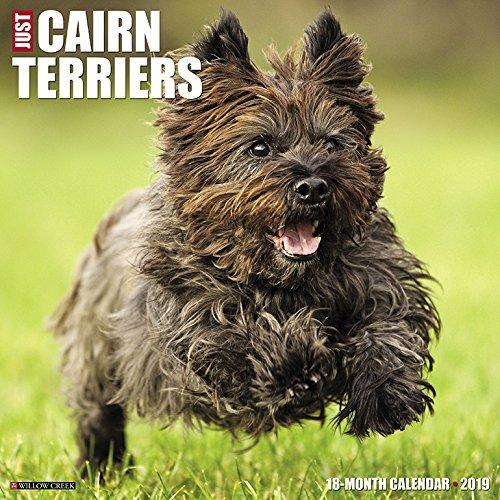 Just Cairn Terriers 2019 Wall Calendar