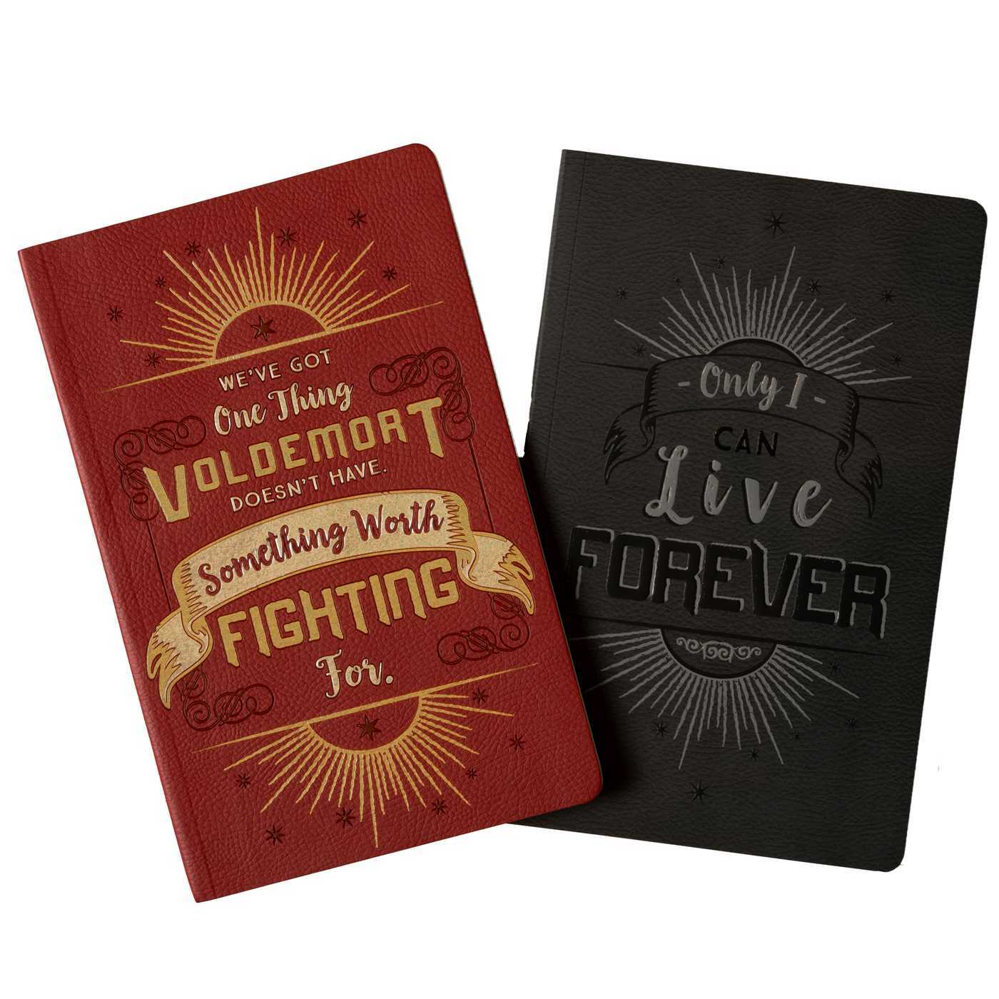 Harry Potter: Character Notebook Collection (Set of 2): Harry Potter and Voldemort
