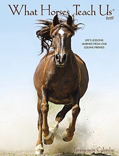 What Horses Teach Us 2019 Engagement Calendar