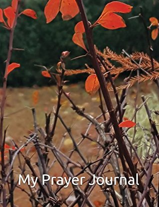 My Prayer Journal: 2 Chronicles 7:14 ESV If My People Who Are Called by My Name Humble Themselves, and Pray and Seek My Face and Turn from Their Wicked Ways,