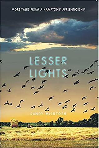 Lesser Lights by Sandy McIntosh