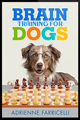 Grey Market Price Brain Training 4 Dogs Obedience Training Commands