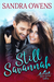 Still Savannah (Blue Ridge Valley #3)