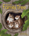 Squirrel's Family Tree by Beth Ferry