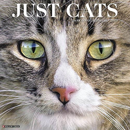 Just Cats 2019 Wall Calendar