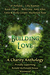 Building Love: A Charity An...