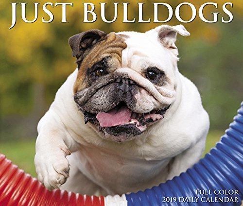 Just Bulldogs 2019 Box Calendar