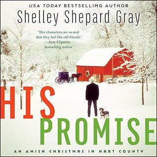 His Promise (The Amish of Hart County, #6)