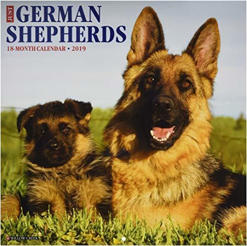 Just German Shepherds 2019 Wall Calendar