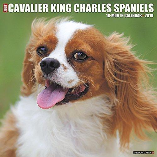 Just Cavalier King Charles Spaniels 2019 Wall Calendar