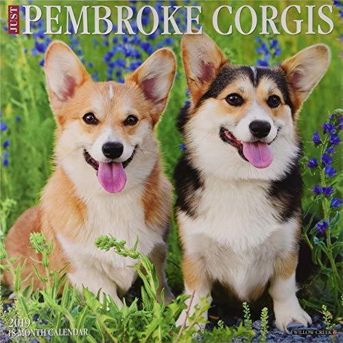 Just Pembroke Corgis 2019 Wall Calendar