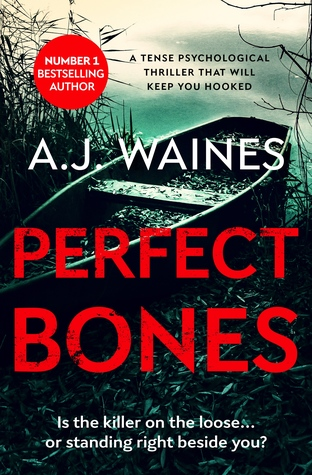 Perfect Bones (Samantha Willerby Mystery Series, #3)