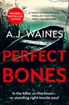 Perfect Bones (Samantha Willerby Mystery #3)
