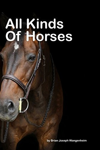 All Kinds Of Horses: beautiful pictures of horses