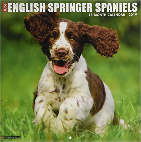 Just English Springer Spaniels 2019 Wall Calendar