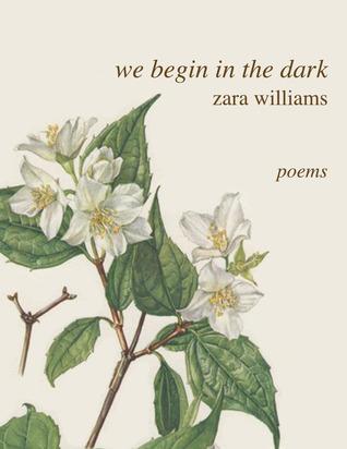 We Begin in the Dark
