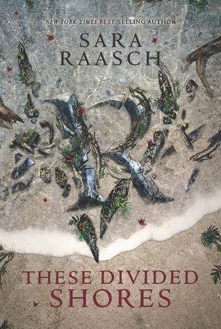 These Divided Shores (Stream Raiders, #2)